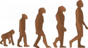 evolution-steps_17-205021450