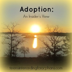 Adoption An Insider's View